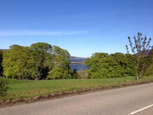 Dornoch Firth countryside 3
