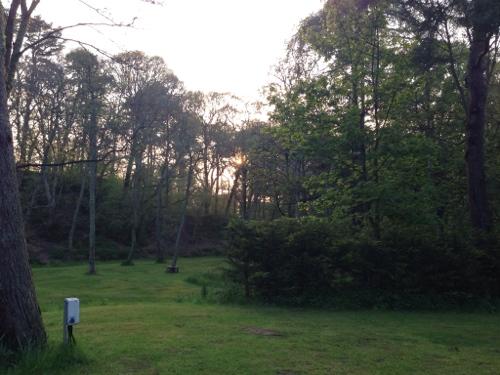 Evening sunshine at Fochabers campsite