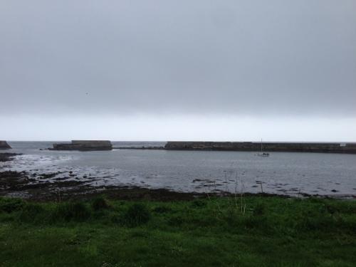 Grey coastline