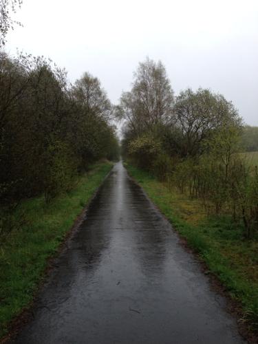 Rainy route 764