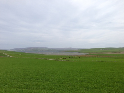 Riding the Orkney mainland 2