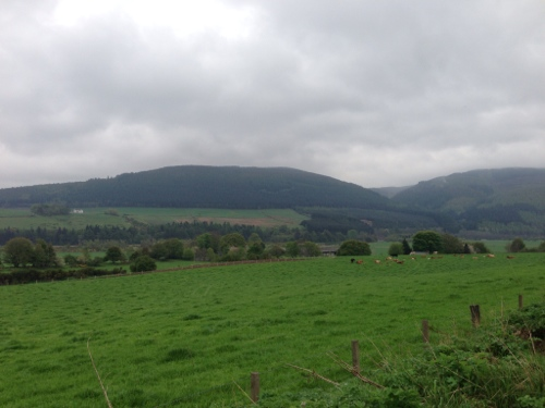 Spey valley countryside 1