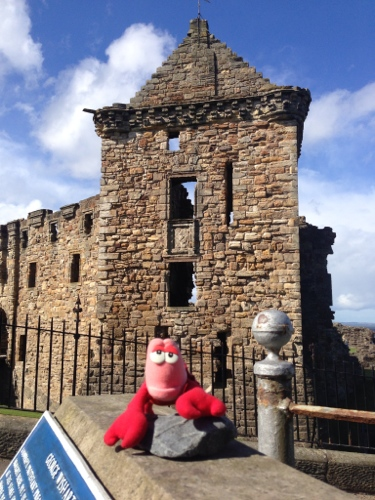 St. Andrews Castle plus Lobster