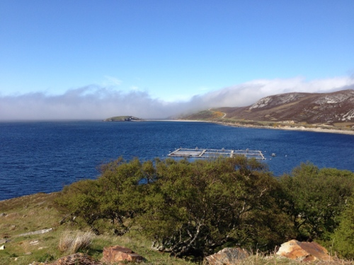 Loch Eriboll - salmon farm I think
