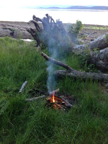 Anti midge fire