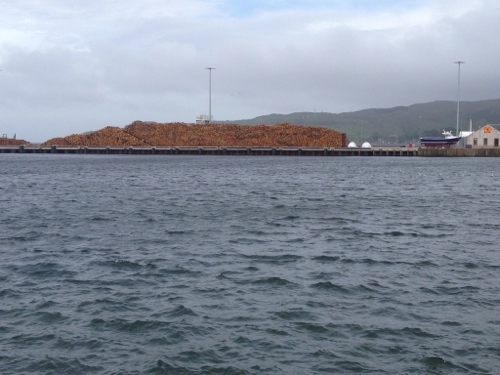 Campbeltown port with lots of timber ready to be shipped