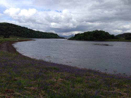 Loch Feochan 2
