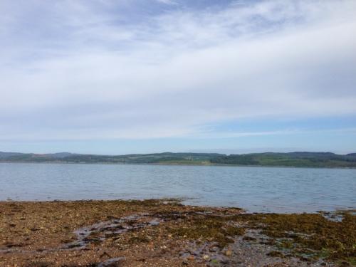 Loch Fyne, gannets fishing