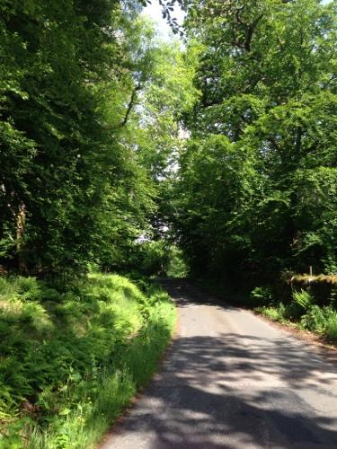 More verdant roads near Cairndow