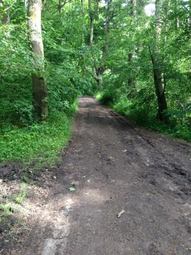 Route 75 deteriorating