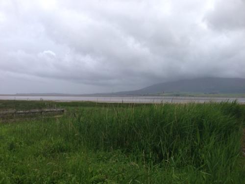 Coast near River Nith estuary