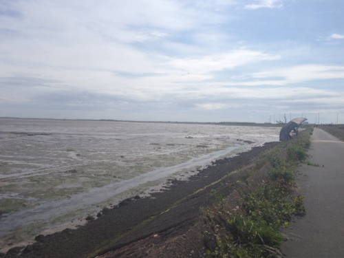 Cycle path through the mudflats