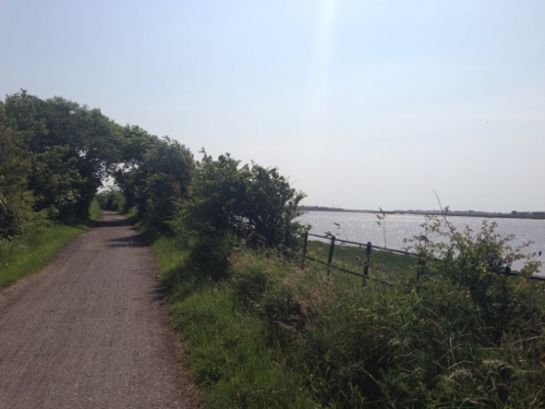 Cycle track alongside the Lune Estuary