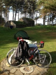 Wild camping in Tentsmuir Forest