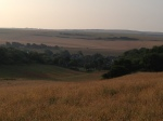 Morning on the South Downs, above East Dean
