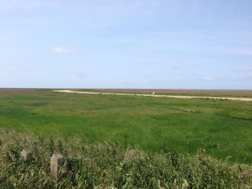 Marshside RSPB reserve
