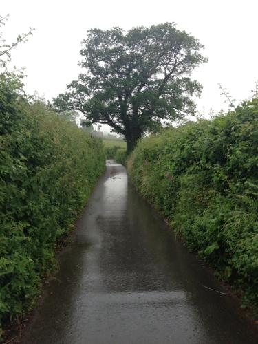 Wet country roads near Abergwyngregyn
