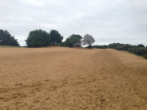 Sand dunes of Candleston