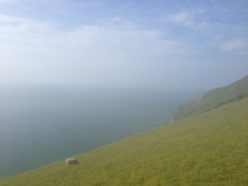 Coast at Countisbury Hill