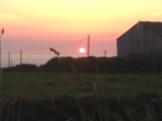 Trevedra Farm Sunset 2