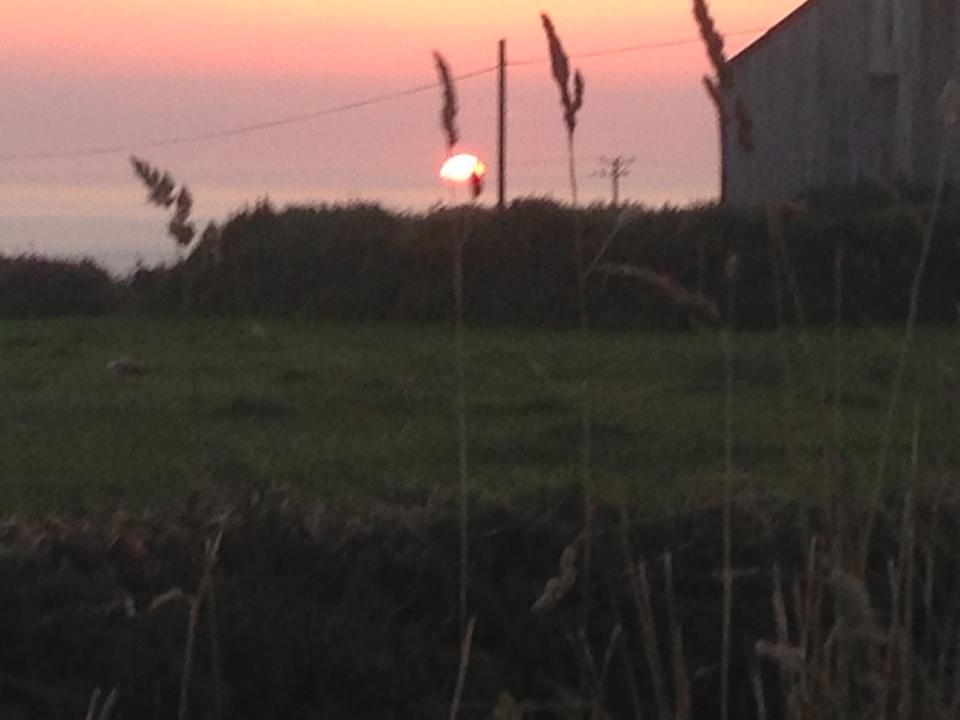 Trevedra Farm Sunset 3