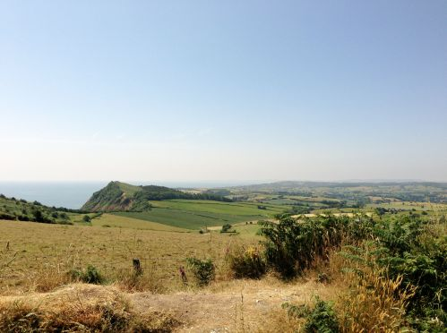 Countryside near Sidmouth