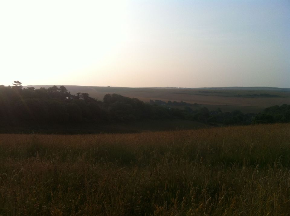 Morning on the South Downs 1