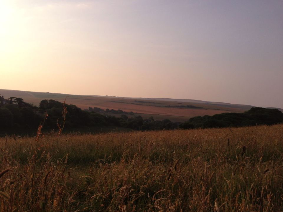 Morning on the South Downs 3