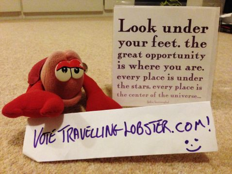 Travelling lobster, clearly biased, but with some wise words.
